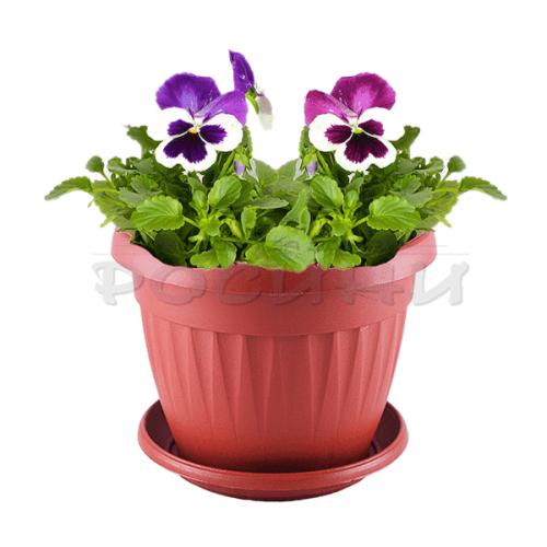 Саксия за цветя в кафяво Ф17см.