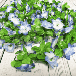Изкуствена лиана с цветя 2м.