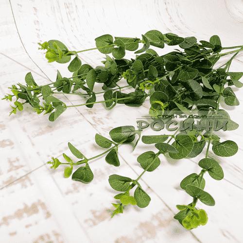 Изкуствена зелена клонка Евкалипт /цветя за декорации