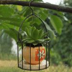 Цветарник за едно цвете с кука за закачане