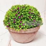 Изкуствен храст в кашпа 16см./декоративни цветя