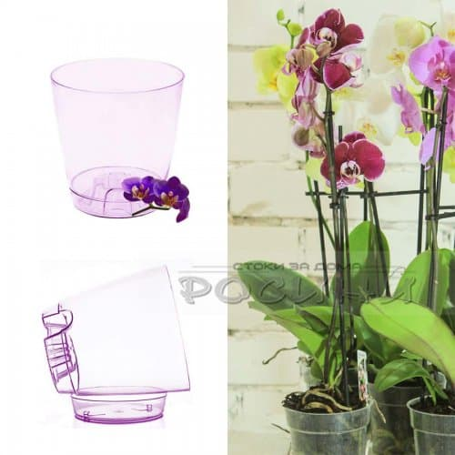 Саксия за орхидея Ф-13см.